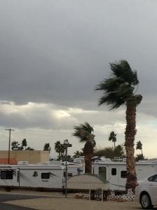 Big wind and dark clouds