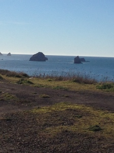 Love that northern California coastline