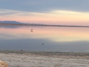 A beautiful evening at the Salton Sea.