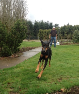 Wiley jumps for joy!